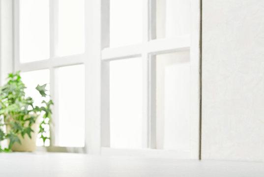 明るい部屋 観葉植物 窓