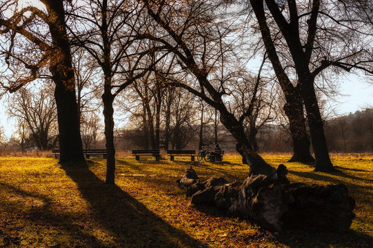 Rest in the park in autumn