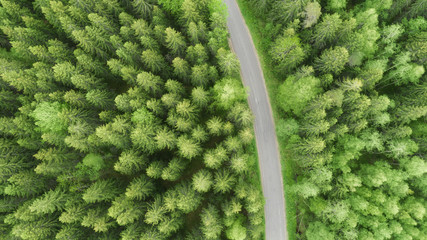 Aerial veiw of empty road in green forest. drone shot.  Winding road view from above.