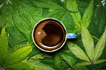 Cup of coffee on marijuana leaves