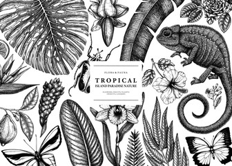 Tropical banner design. Vector frame with hand drawn tropical plants, exotic flowers, palm leaves, insects and chameleon. Vintage wildlife background. Summer template with tropical plants and animals.