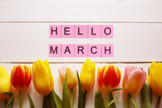 Hello March word, on a background with tulips. Spring concept
