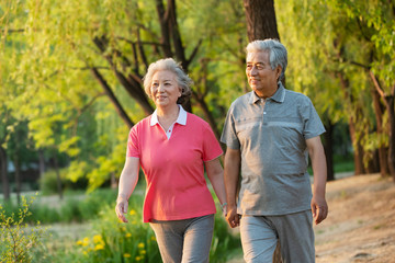 The happiness of the elderly couple walking in the park