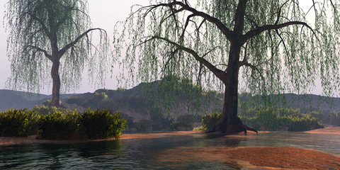 River Landscape - Weeping Willow trees perch on nearby banks of this flowing river near some low mountains.