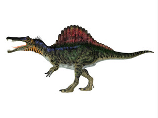 Spinosaurus Dinosaur Side Profile - Spinosaurus was a carnivorous dinosaur that hunted in Africa during the Cretaceous Period.