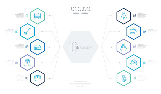 agriculture concept business infographic design with 10 hexagon options. outline icons such as seed bag, egg, bale, sack, bees, composter