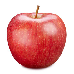 Red apple isolated on white. Apple Clipping Path.