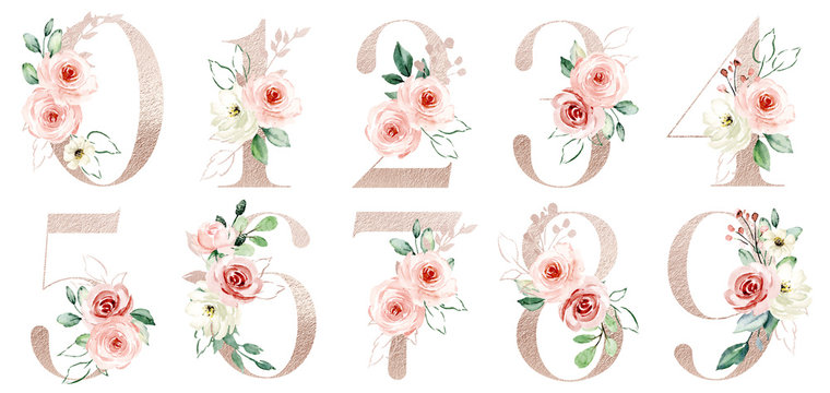 Gold numbers set with watercolor flowers peach roses and leaf. Perfectly for wedding, birthday invitations, greeting card and other floral design. Hand painting. Isolated on white background.
