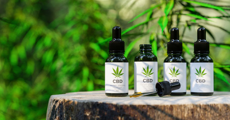 CBD cannabis OIL. Cannabis oil in pipette, hemp product. Concept of herbal alternative medicine, cbd oil, pharmaceutical industry