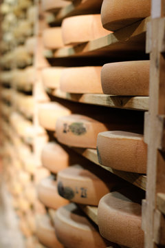 Professional cheese aging cellar for Comte cheese wheels, Jura, France