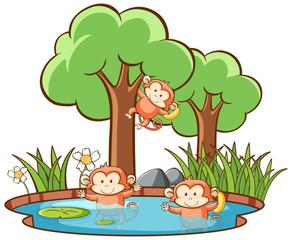 Foto op Canvas Kids Scene with monkeys in forest