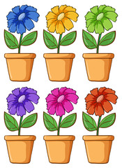 Door stickers Kids Isolated set of flower in different colors
