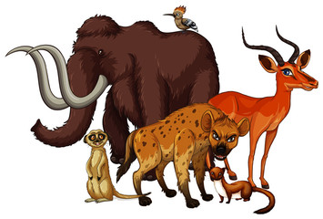 Isolated picture of many animals