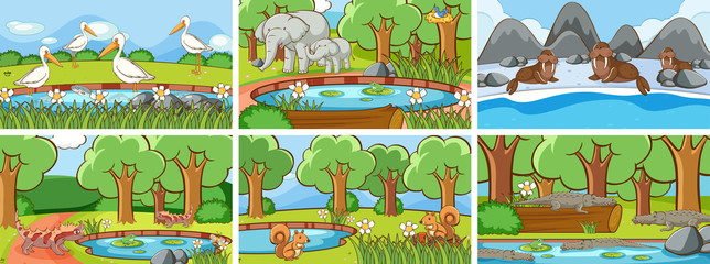 Fond de hotte en verre imprimé Jeunes enfants Background scenes of animals in the wild