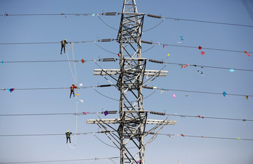 Workers of Torrent Power Limited remove kites and thread tangled up in electric power cables after the end of the kite flying season in Ahmedabad