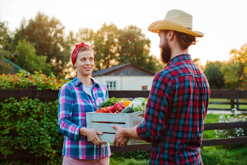 A man and a woman holding a box with a crop of farm vegetables background of the garden.