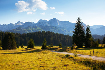 Wall Mural - Beautiful mountain landscape in the village of Zabljak. Location National park Durmitor, Montenegro, Europe.