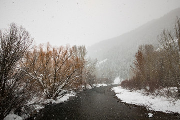 Snow falling over a river in Sun Valley