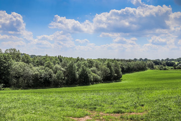 Foto op Plexiglas Pistache Beautiful green agricultural landscape with a blue sky and some clouds