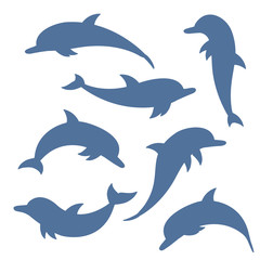 dolphin. collection of flat icons. vector illustration.
