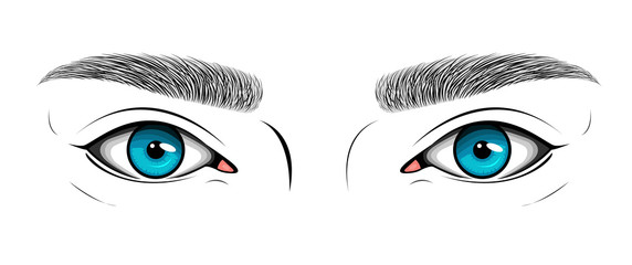 Vector black and white illustration with woman's blue eyes and hand drawn brows. Makeup Look for browbar.