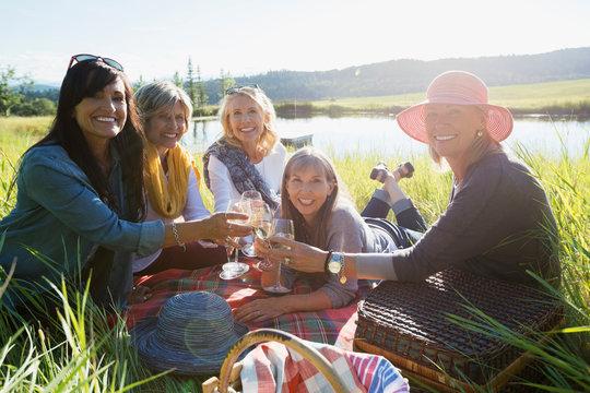 Portrait smiling women toasting wine glasses sunny grass