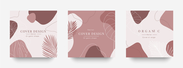 Creative cover design vector  for Instagram story template ,Social media posts, Story and photos, Editable collection backgrounds with Tropical leaf