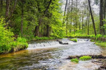 Obraz Szumy na Tanwi (Cascades on Tanew River) Roztocze (Roztochia), Roztoczanski Park  Narodowy (Roztocze National Park), Poland - fototapety do salonu
