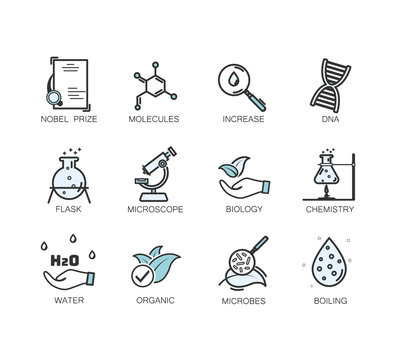 medical specialization icon