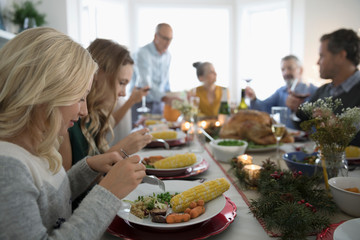 Family and friends enjoying Christmas dinner at table