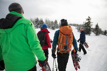 Friends carrying snowshoeing equipment in snow
