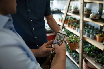 Gay male couple with camera phone photographing succulent, shopping in garden center