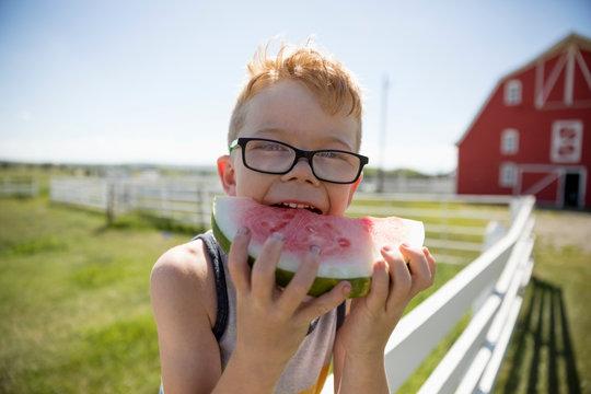 Portrait cute boy eating watermelon on sunny rural farm fence