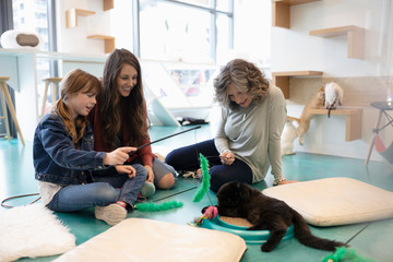 Multi-generation women playing with kitten in cat cafe
