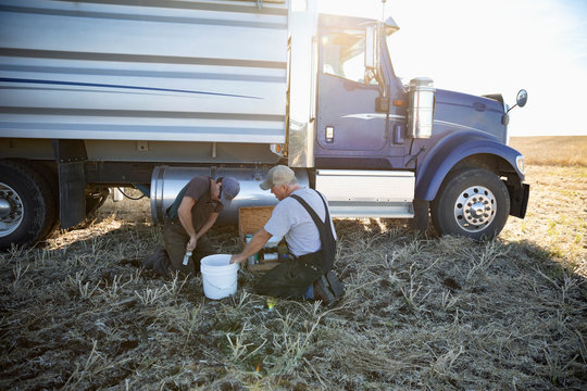Farmers working next to trailer truck on farm