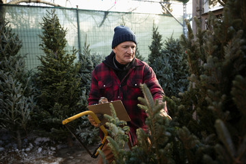 Worker with clipboard and saw inspecting Christmas tree at Christmas market Fotobehang