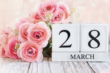 White wood calendar blocks with the date March 28th and pink ranunculus flowers over a wooden table. Selective focus with blurred background.