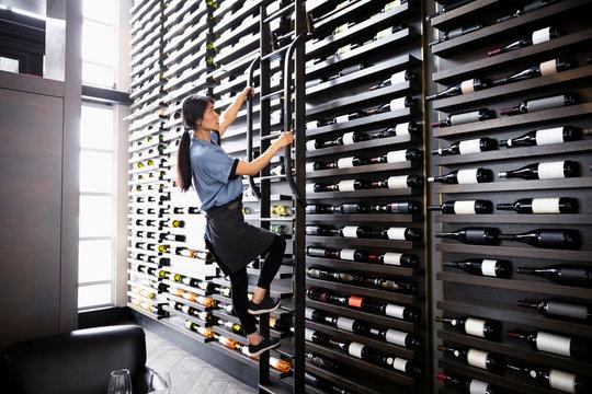 Female sommelier climbing wine rack ladder in restaurant