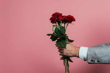 cropped view of man holding bouquet of red roses, isolated on pink