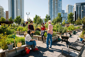 Man teaching gardening to young adults in sunny, urban community garden Fotomurales