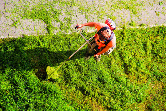 Young worker mowing lawn with grass trimmer outdoors in garden. Man mowing green grass, mower top view. Professional roadside mowing lawn. Photo of maintenance professional worker cutting ground grass