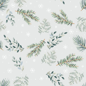 Christmas seamless pattern, green pine, fir twigs, fern, snowflakes, gray background. Vector illustration. Nature design. Season greeting. Winter forest. Xmas holidays