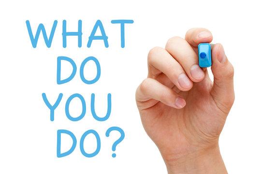 What Do You Do Question Concept