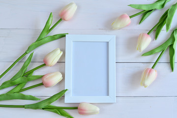 photo frame and flowers on a pink background.tulip.