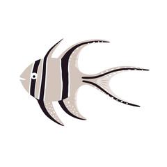 Sea fish. Banggai cardinalfish illustration. Vector illustration.
