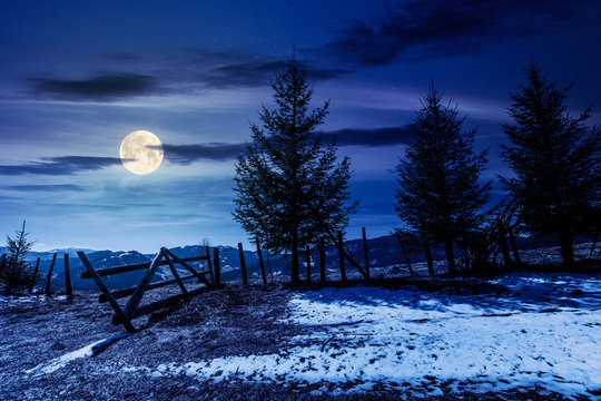 spruce trees on the mountain hill at night. early springtime weather with clouds on the sky in full moon light. snow and grass on the meadow. valley and ridge in the distance