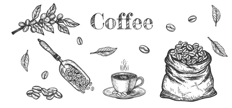 Aroma coffee beans objects set