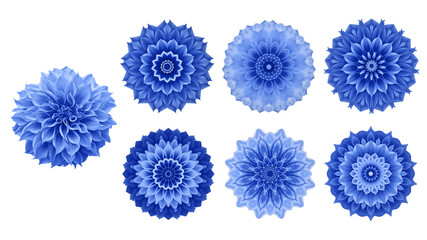 Blue Dahlia flower with 6 flower forms design elements (kaleidoscope effect), abstract mandala...