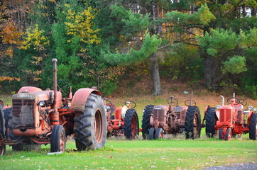 Old tractors in farm