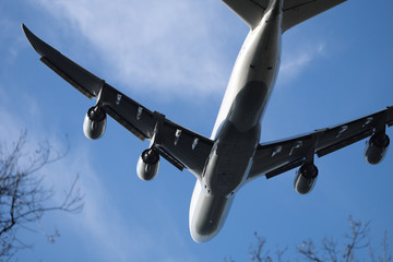 Flugzeug in geringer Flughöhe über Bäumen - Stockfoto